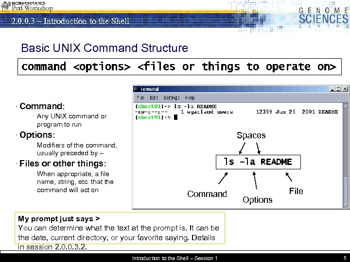 2. 0. 0. 3 – Introduction to the Shell Basic UNIX Command Structure command