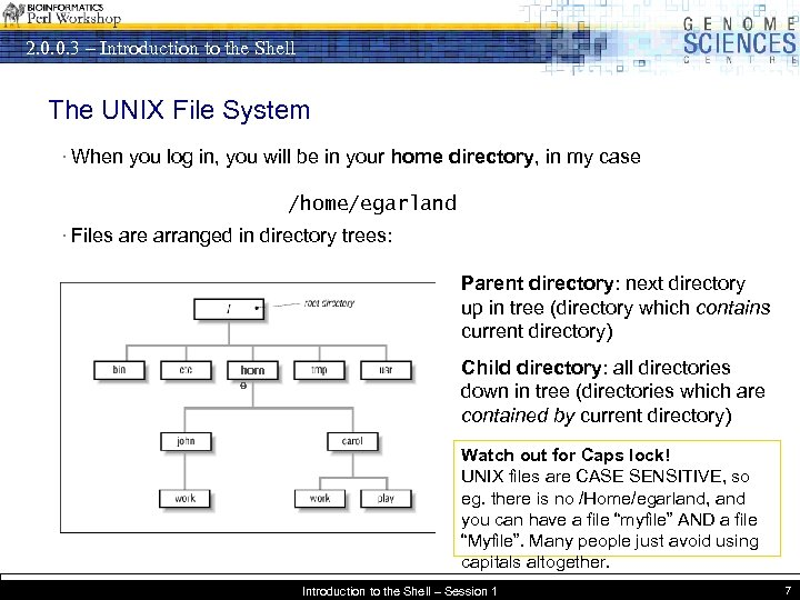 2. 0. 0. 3 – Introduction to the Shell The UNIX File System ·