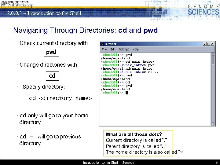 2. 0. 0. 3 – Introduction to the Shell Navigating Through Directories: cd and