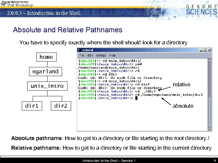 2. 0. 0. 3 – Introduction to the Shell Absolute and Relative Pathnames ·