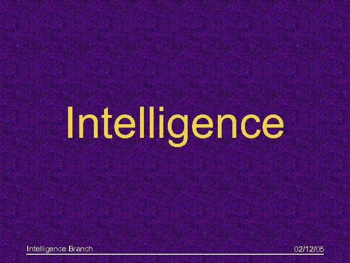 Intelligence Branch 02/12/05