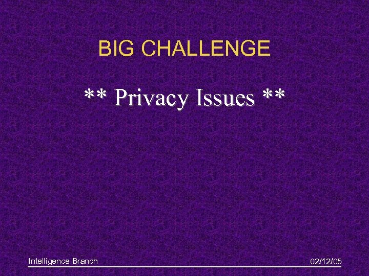 BIG CHALLENGE ** Privacy Issues ** Intelligence Branch 02/12/05