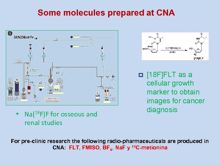 Some molecules prepared at CNA p • Na[18 F]F for osseous and renal studies