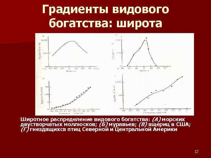 Градиенты видового богатства: широта Широтное распределение видового богатства: (А) морских двустворчатых моллюсков; (Б) муравьев;
