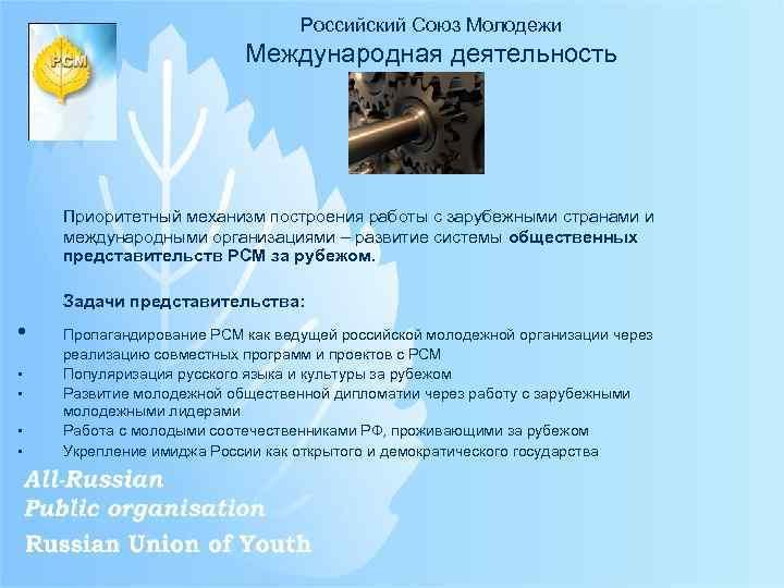 Российский Союз Молодежи Международная деятельность Приоритетный механизм построения работы с зарубежными странами и международными