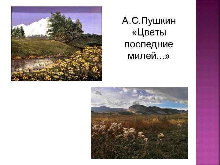 А. С. Пушкин «Цветы последние милей. . . »