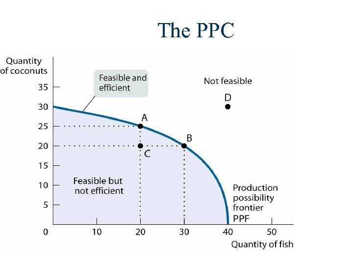 The PPC