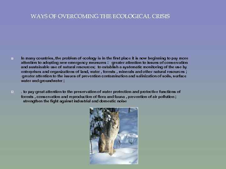 WAYS OF OVERCOMING THE ECOLOGICAL CRISIS In many countries, the problem of ecology is