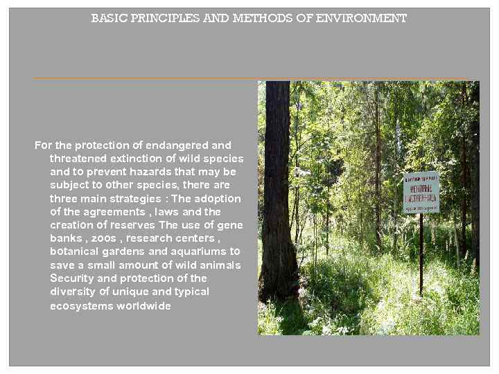 BASIC PRINCIPLES AND METHODS OF ENVIRONMENT For the protection of endangered and threatened extinction