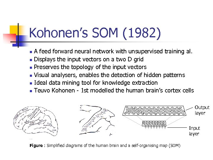 Kohonen's SOM (1982) A feed forward neural network with unsupervised training al. n Displays