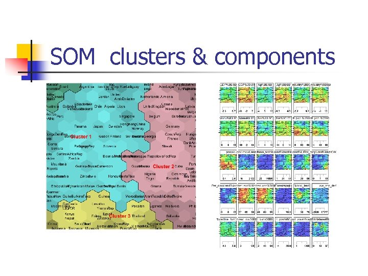 SOM clusters & components