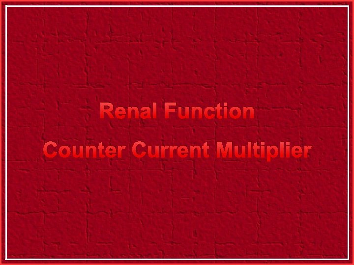 Renal Function Counter Current Multiplier
