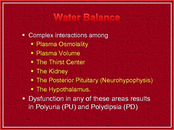 Water Balance § Complex interactions among § Plasma Osmolality § Plasma Volume § The