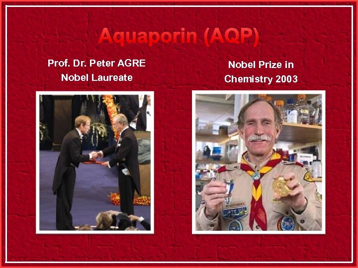 Aquaporin (AQP) Prof. Dr. Peter AGRE Nobel Laureate Nobel Prize in Chemistry 2003