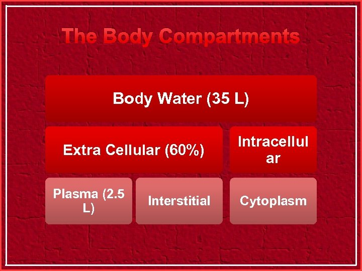 The Body Compartments Body Water (35 L) Extra Cellular (60%) Plasma (2. 5 L)