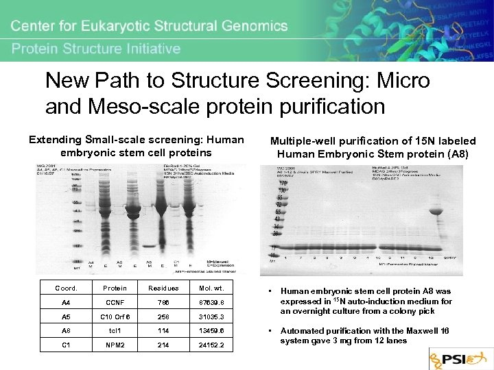 New Path to Structure Screening: Micro and Meso-scale protein purification Extending Small-scale screening: Human