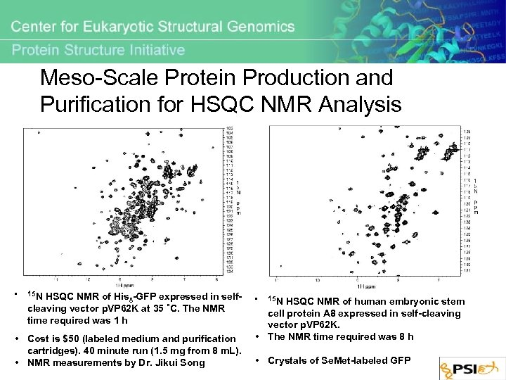 Meso-Scale Protein Production and Purification for HSQC NMR Analysis • 15 N HSQC NMR