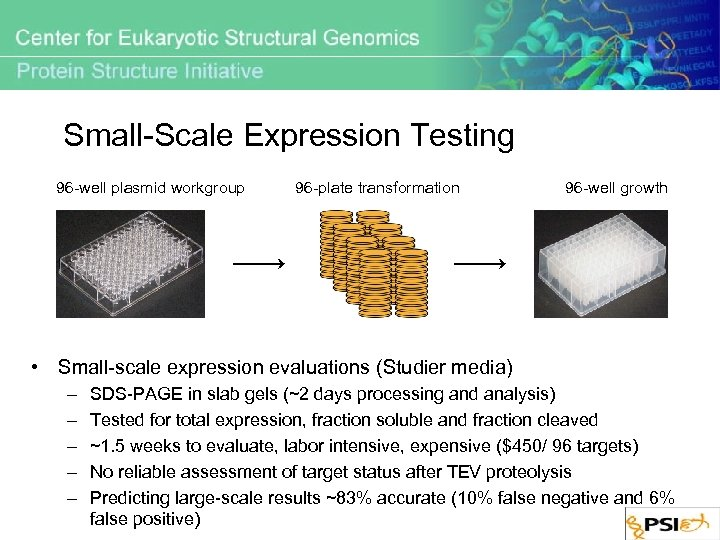 Small-Scale Expression Testing 96 -well plasmid workgroup 96 -plate transformation 96 -well growth •