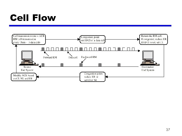 Cell Flow 37