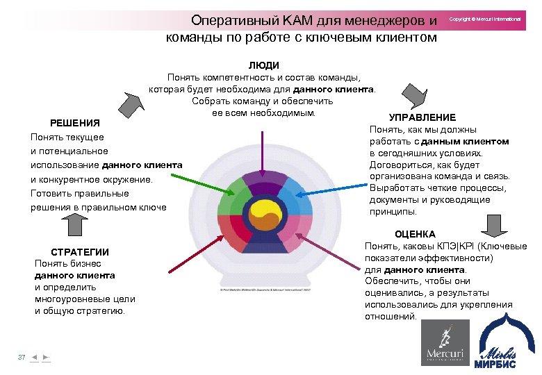 Оперативный KAM для менеджеров и команды по работе с ключевым клиентом Copyright © Mercuri