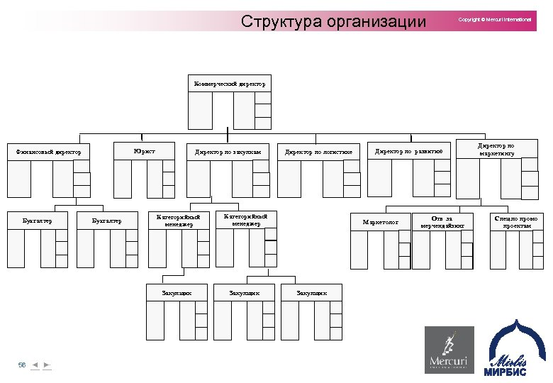 Структура организации Copyright © Mercuri International Коммерческий директор Юрист Финансовый директор Директор по закупкам