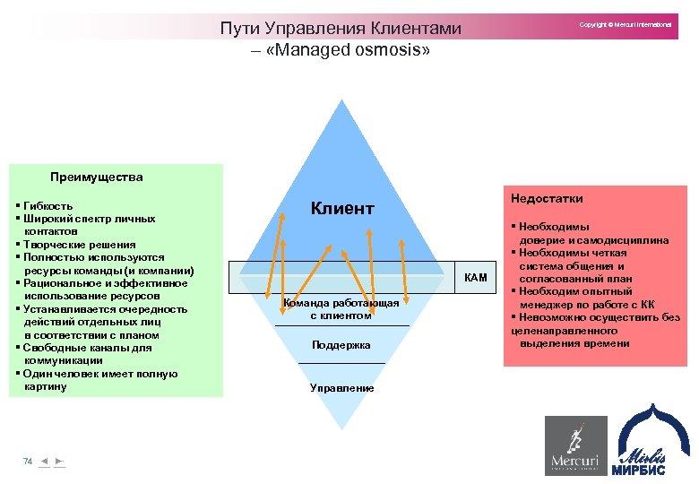 Пути Управления Клиентами – «Managed osmosis» Copyright © Mercuri International Преимущества § Гибкость §