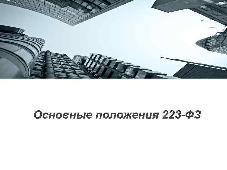Основные положения 223 -ФЗ