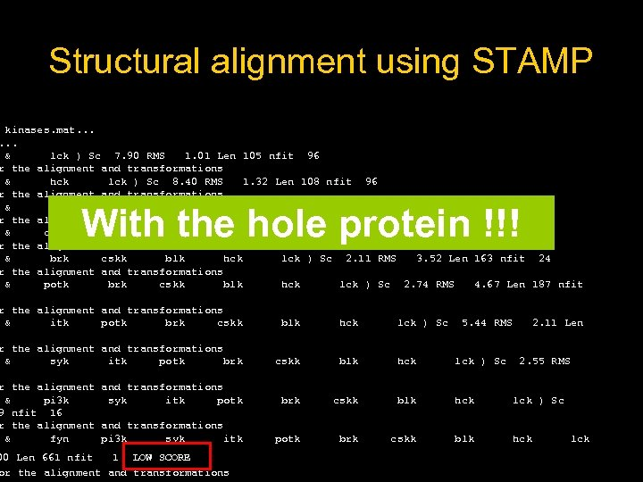 Structural alignment using STAMP kinases. mat. . . & lck ) Sc 7. 90