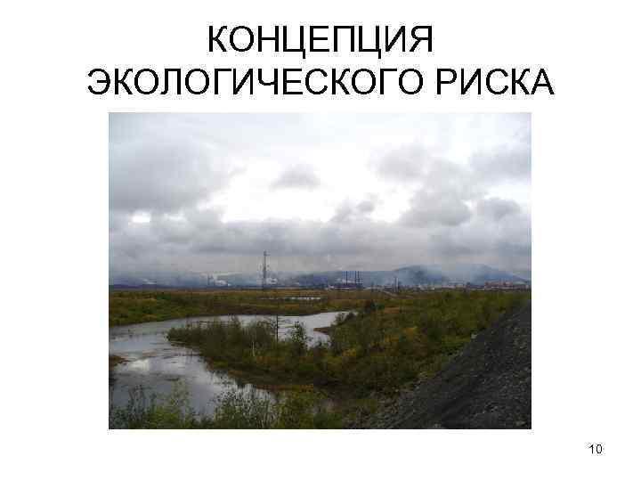 КОНЦЕПЦИЯ ЭКОЛОГИЧЕСКОГО РИСКА 10