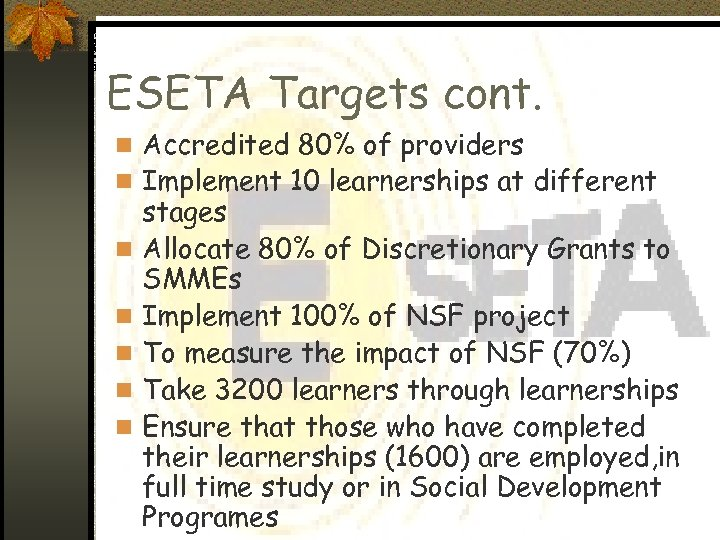 ESETA Targets cont. n Accredited 80% of providers n Implement 10 learnerships at different
