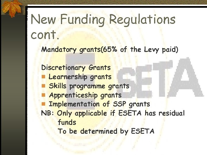 New Funding Regulations cont. Mandatory grants(65% of the Levy paid) Discretionary Grants n Learnership