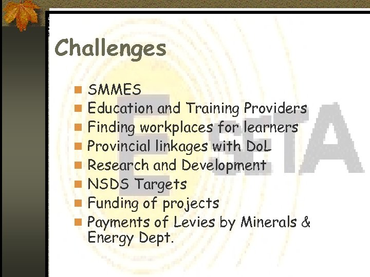Challenges n SMMES n Education and Training Providers n Finding workplaces for learners n