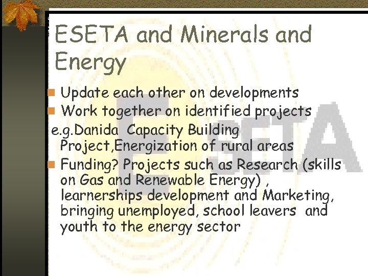 ESETA and Minerals and Energy n Update each other on developments n Work together
