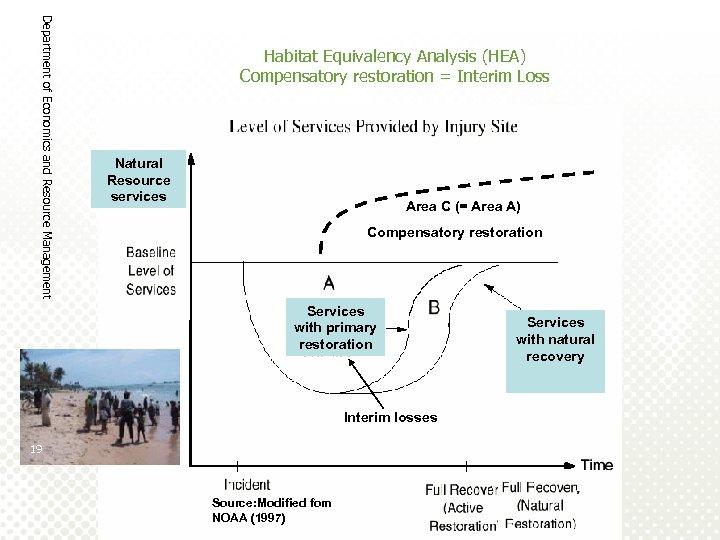 Department of Economics and Resource Management Habitat Equivalency Analysis (HEA) Compensatory restoration = Interim