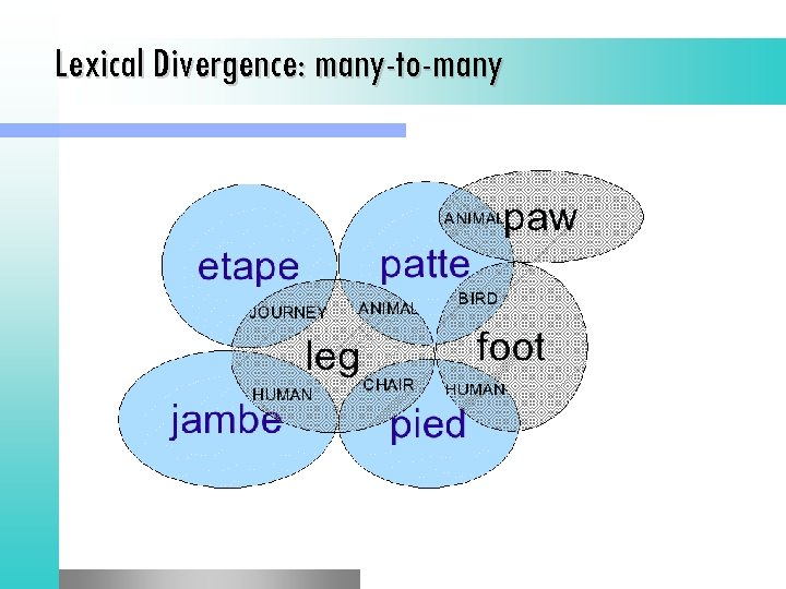 Lexical Divergence: many-to-many