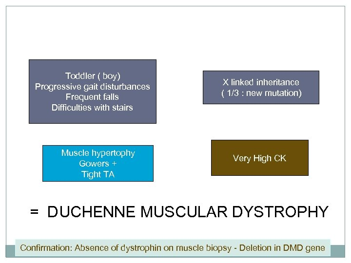 Toddler ( boy) Progressive gait disturbances Frequent falls Difficulties with stairs Muscle hypertophy Gowers