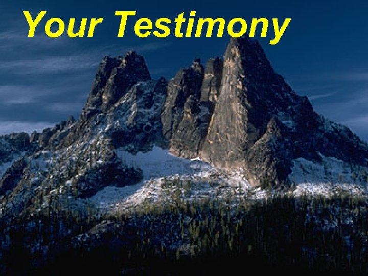 Your Testimony