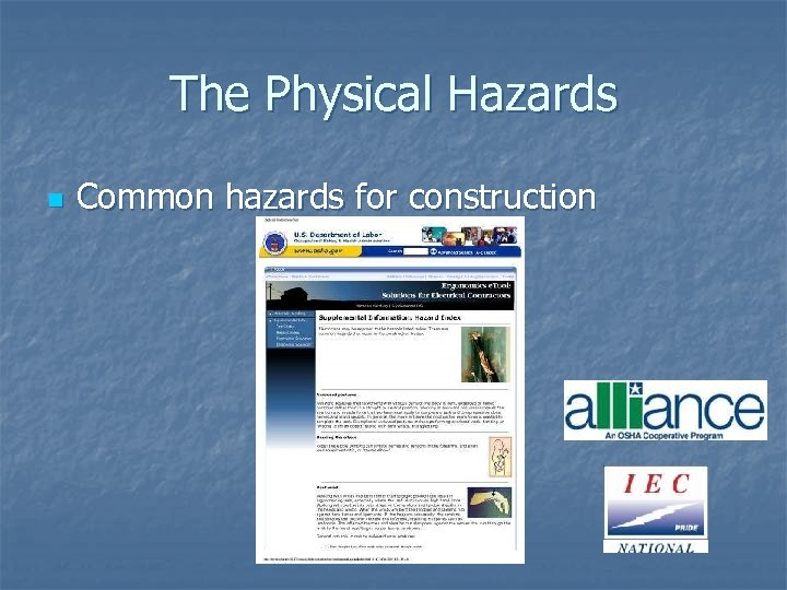 The Physical Hazards n Common hazards for construction