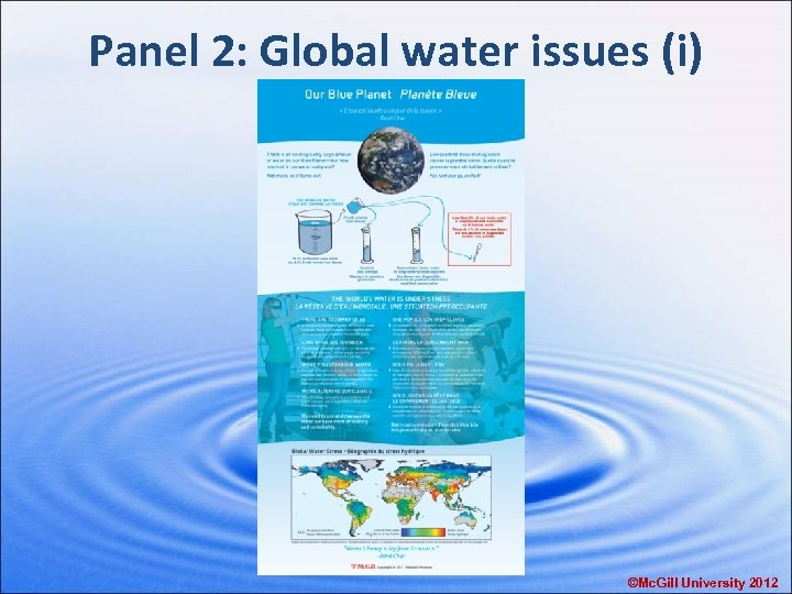 Panel 2: Global water issues (i) ©Mc. Gill University 2012