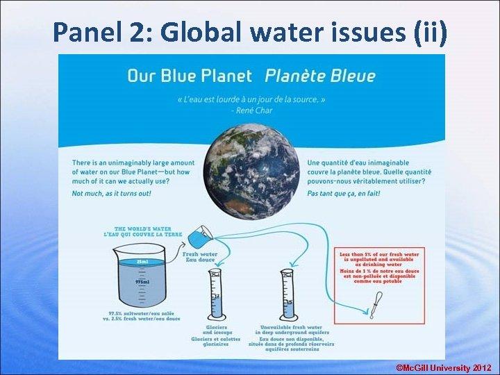 Panel 2: Global water issues (ii) ©Mc. Gill University 2012
