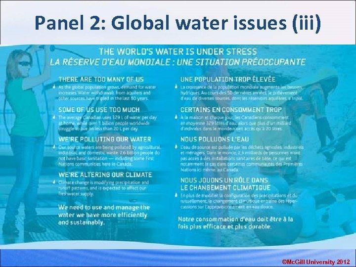 Panel 2: Global water issues (iii) ©Mc. Gill University 2012
