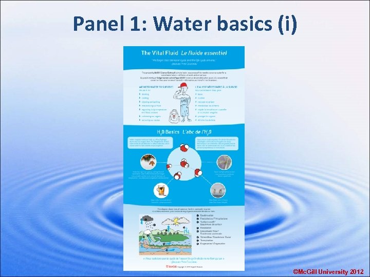 Panel 1: Water basics (i) ©Mc. Gill University 2012