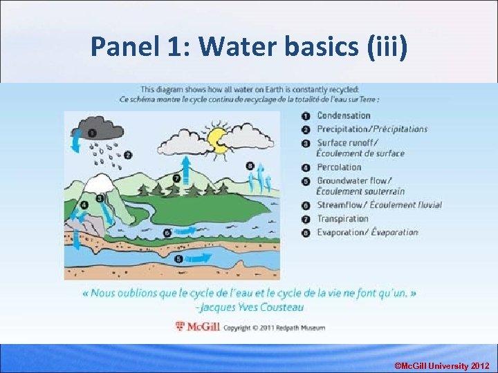 Panel 1: Water basics (iii) ©Mc. Gill University 2012