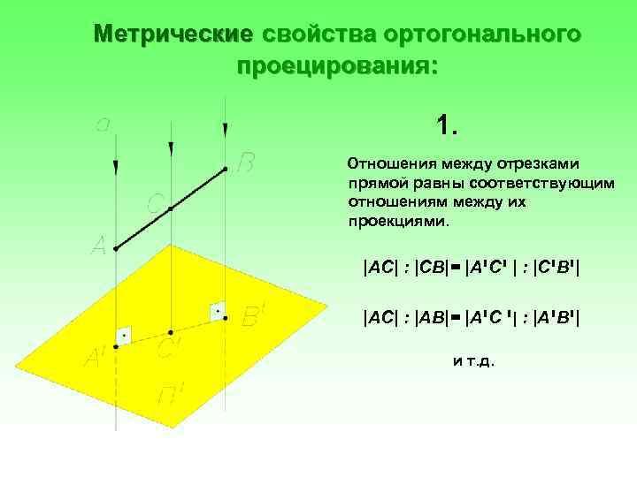 Метрические свойства ортогонального проецирования: 1. Отношения между отрезками прямой равны соответствующим отношениям между их