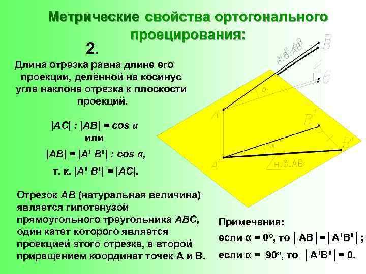 Метрические свойства ортогонального проецирования: 2. Длина отрезка равна длине его проекции, делённой на косинус