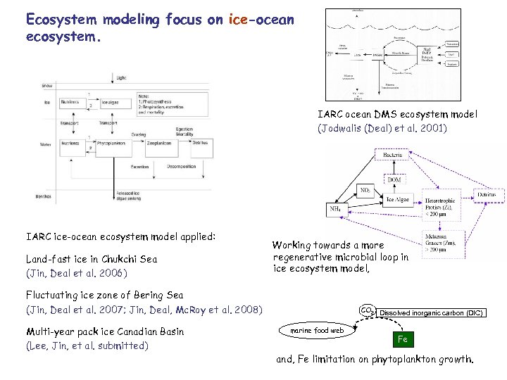 Ecosystem modeling focus on ice-ocean ecosystem. IARC ocean DMS ecosystem model (Jodwalis (Deal) et