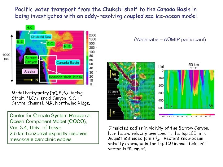 Pacific water transport from the Chukchi shelf to the Canada Basin in being investigated