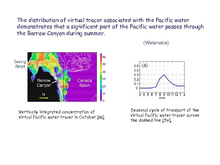 The distribution of virtual tracer associated with the Pacific water demonstrates that a significant