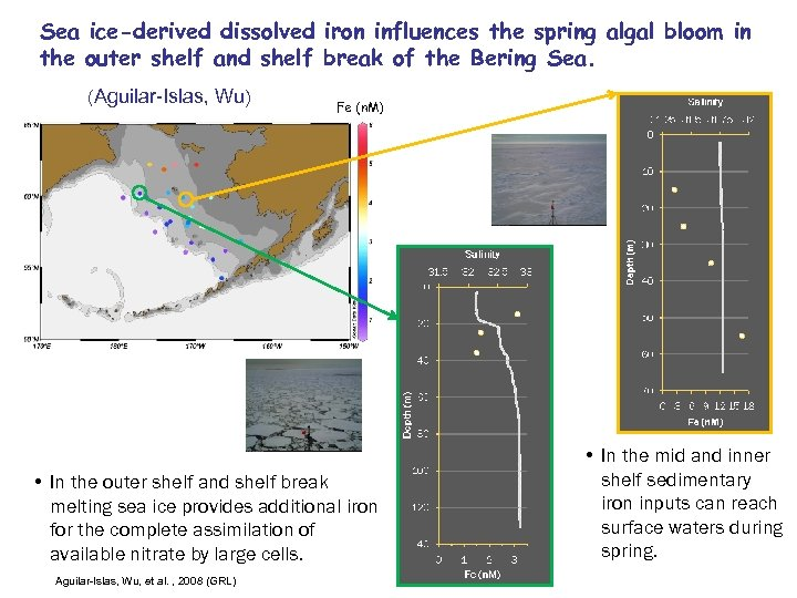 Sea ice-derived dissolved iron influences the spring algal bloom in the outer shelf and