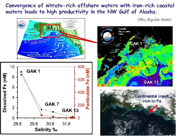Convergence of nitrate-rich offshore waters with iron-rich coastal waters leads to high productivity in
